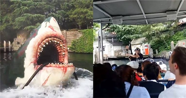"""Màn trình diễn """"cá mập cắn cáp"""" tại công viên Nhật Bản"""