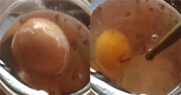 Điều gì xảy ra khi ngâm trứng vào giấm 1 ngày và 1 tuần?