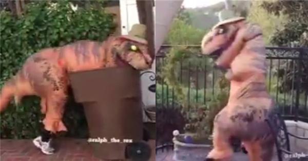 Cười thả ga với clip khủng long T-rex siêu bựa trở lại