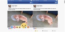 'Quẩy tung nóc' với 5 biểu tượng mới của nút 'Like' trên Facebook