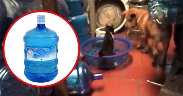 Kinh hoàng nước đóng chai từ nguồn nước giếng khoan kém vệ sinh