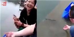 Kì lạ cá được phóng sinh nhiều lần vẫn quyết bơi về với chủ