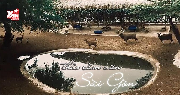 Bạn sẽ không thể tin được đây chính là Thảo Cầm Viên Sài Gòn