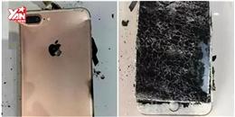 iPhone 7 Plus nổ tung, màn hình tan nát sau khi rơi xuống đất