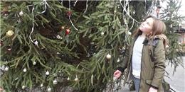 Bất ngờ với lí do cô bé này bỏ tiền trang trí cây thông cho thị trấn