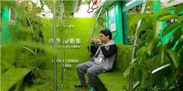Trải nghiệm 'một được hai': đi tàu điện còn được tham quan 'rừng rậm'