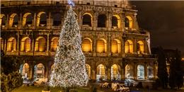 Chiêm ngưỡng 10 cây thông Noel đỉnh nhất mùa Giáng Sinh này