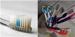Bàn chải đánh răng bẩn hơn rất nhiều so với những gì bạn tưởng tượng