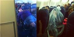 Khó đỡ với độ 'lầy' của những hành khách 'quái dị' trên các chuyến bay